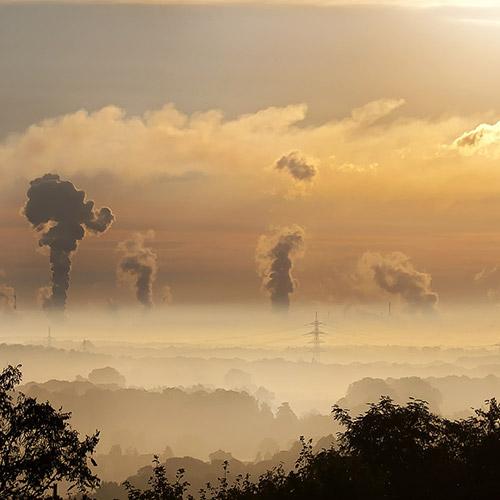 Low Carbon Grant